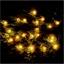 Lichterkette Kiefernzapfen