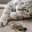 Speelgoedmuis voor katten