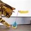 Kattenspeeltje gek ei