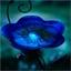 Baignoire à oiseaux papillon bleu