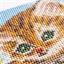Vorgerahmtes Perlenbilder-Set Kätzchen im Baum