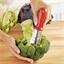 Etrogneur choux/brocolis rouge