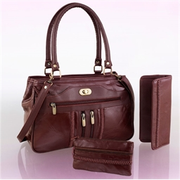 Classic luxury bag and accessories