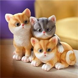 3 chatons détecteur mouvements