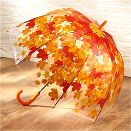 Umbrella with Autumnal Leaves