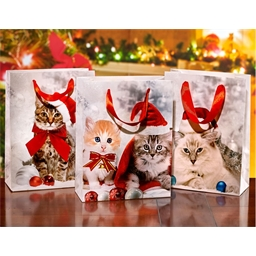 Lot de 3 sacs cadeau chatons