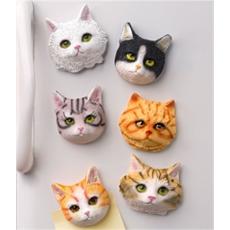 6 magnets têtes de chat
