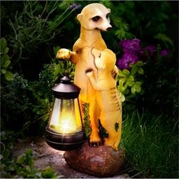 Meerkat with lantern