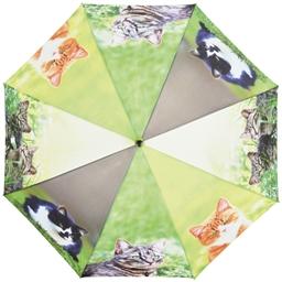 Regenschirm : Verschiedene Gründe