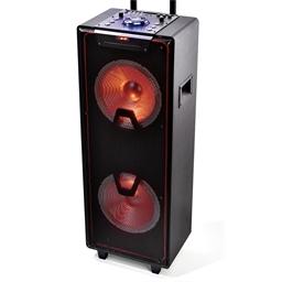 Enceinte CD portable 1000 watts