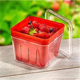 Boîte passoire fruits rouges