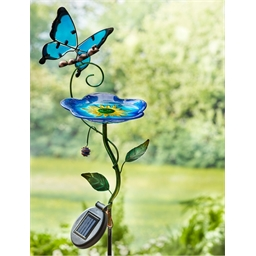 Blue butterfly bird bath