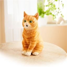 Chat détecteur roux