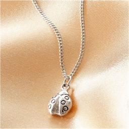 Lucky charm necklace : A choice of 3 different pendants