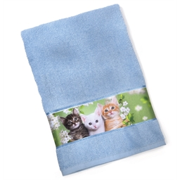 Set of 3 terry cloth kitten towels