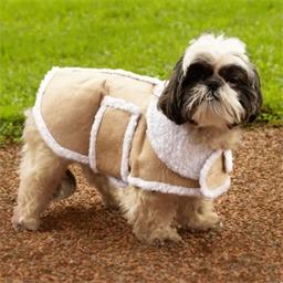 Dog Jacket Tan