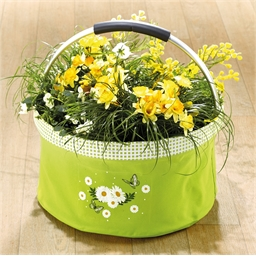 Daisy plant basket