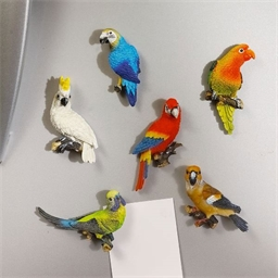 6 Parrot fridge magnets