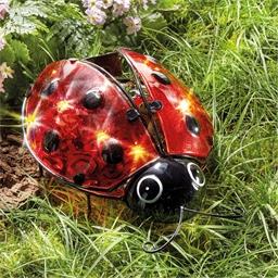 Maxi solar ladybird