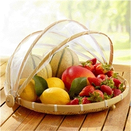 Fruit basket with mosquito net