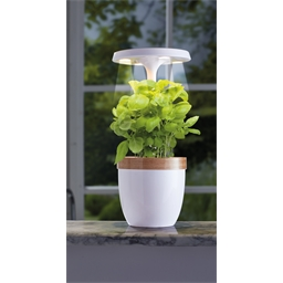 Potager d'intérieur LED