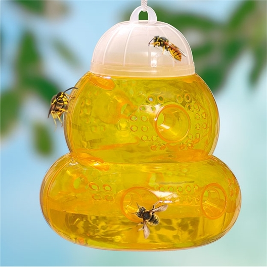 Set of two insect traps