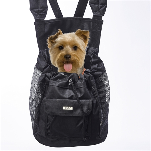 Front carrier for small dog