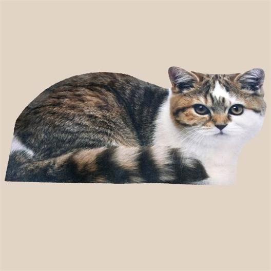 Tapis forme chat Rouxi ou lot de 2 (Rouxi + Gribouille)