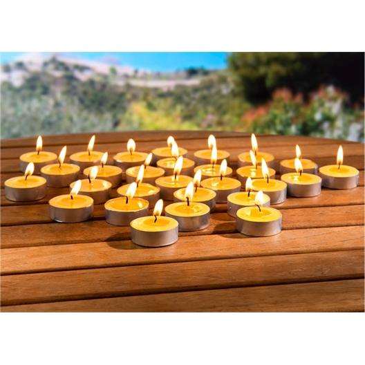 28 bougies à la citronnelle