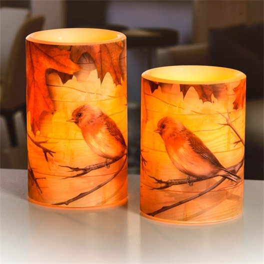 2 LED autumn candles