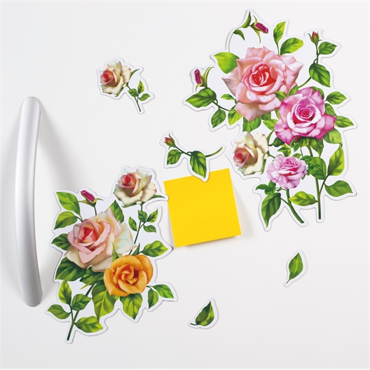 Magnets roses