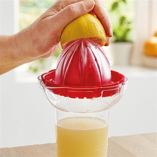 Citrus squeezer with jug