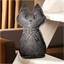 Vochtabsorberende kat Groot model