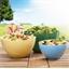 De 3 frisse saladeschalen
