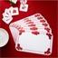 6 placemats met kerststerren + 6 onderzetters
