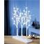 LED birch branches