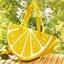 Lemon cool bag