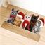 Indoor Christmas cat mat