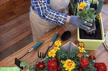 Maintenance and gardeningtools
